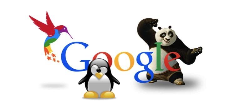 Algorytmy Panda, Pingwin, Phantom, Koliber